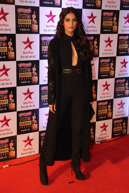 Star Screen Awards Red Carpet Images (1) (1)