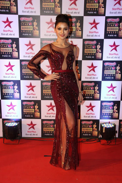 Star Screen Awards Red Carpet Images (18)