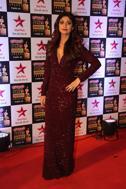 Star Screen Awards Red Carpet Images (5)